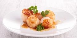 Creamy Butternut Squash Puree with Scallops and Bacon