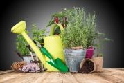 April - plant your herbs in time…
