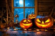 Halloween - Create Pumpkin Decos with your Children …